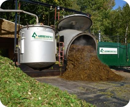 recyclage de cèdre